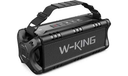 altoparlante portatile w-king